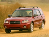 Амортисьорна сфера за Subaru Forester (SG)